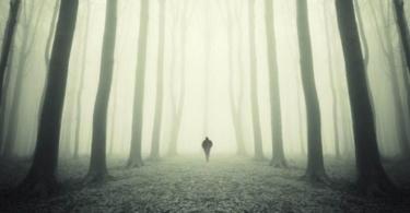 психологическая травма и смысл жизни