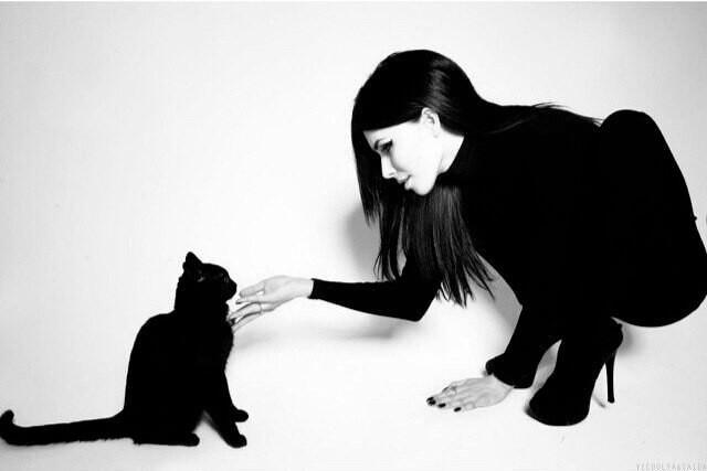 Магические особенности кошек
